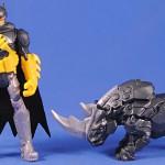 Axe rhino